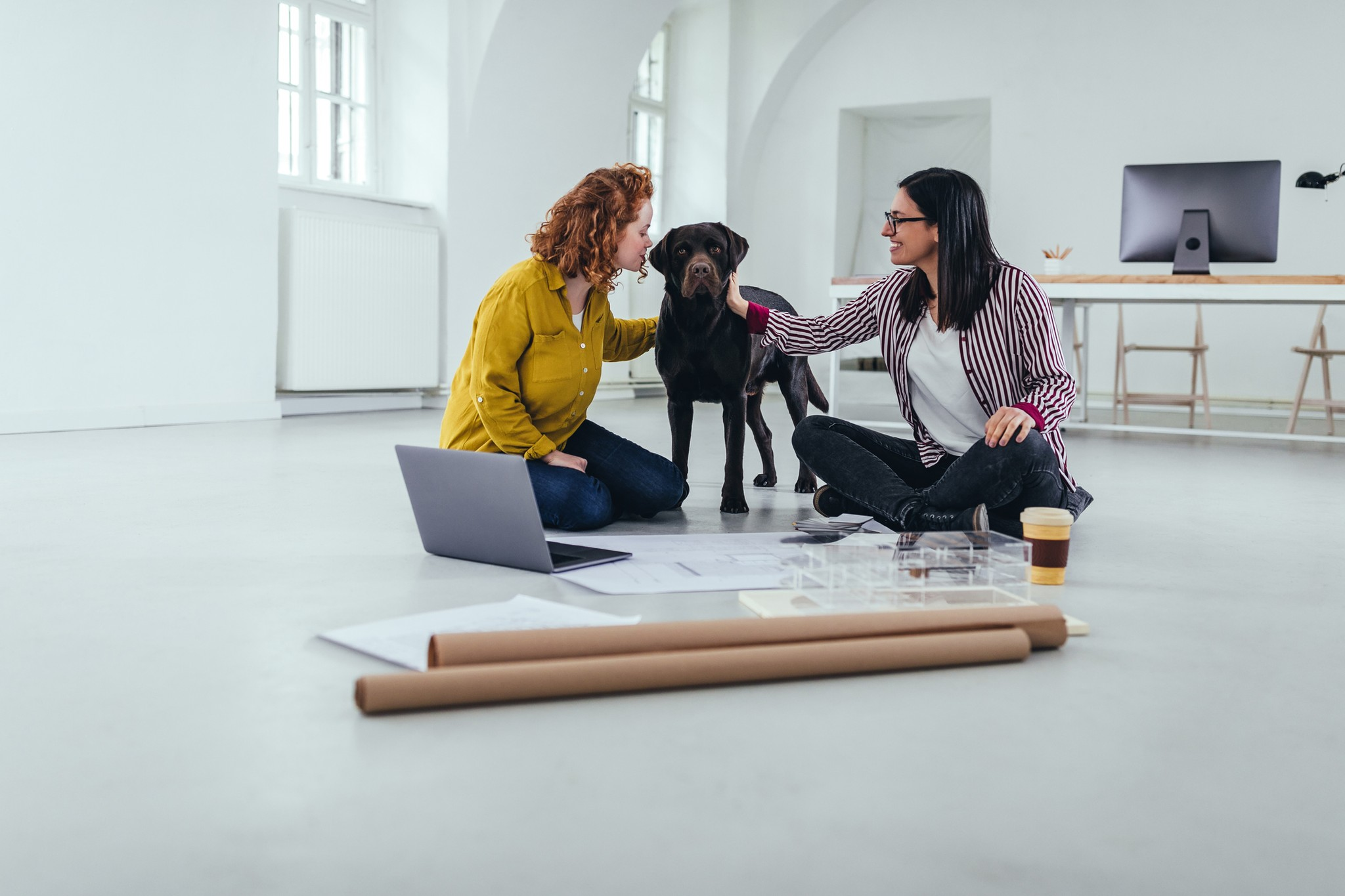 When Less Is More: Socializing Your Dog