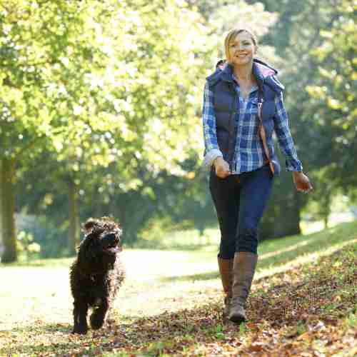 Woman Out Walking Her Dog In The Park