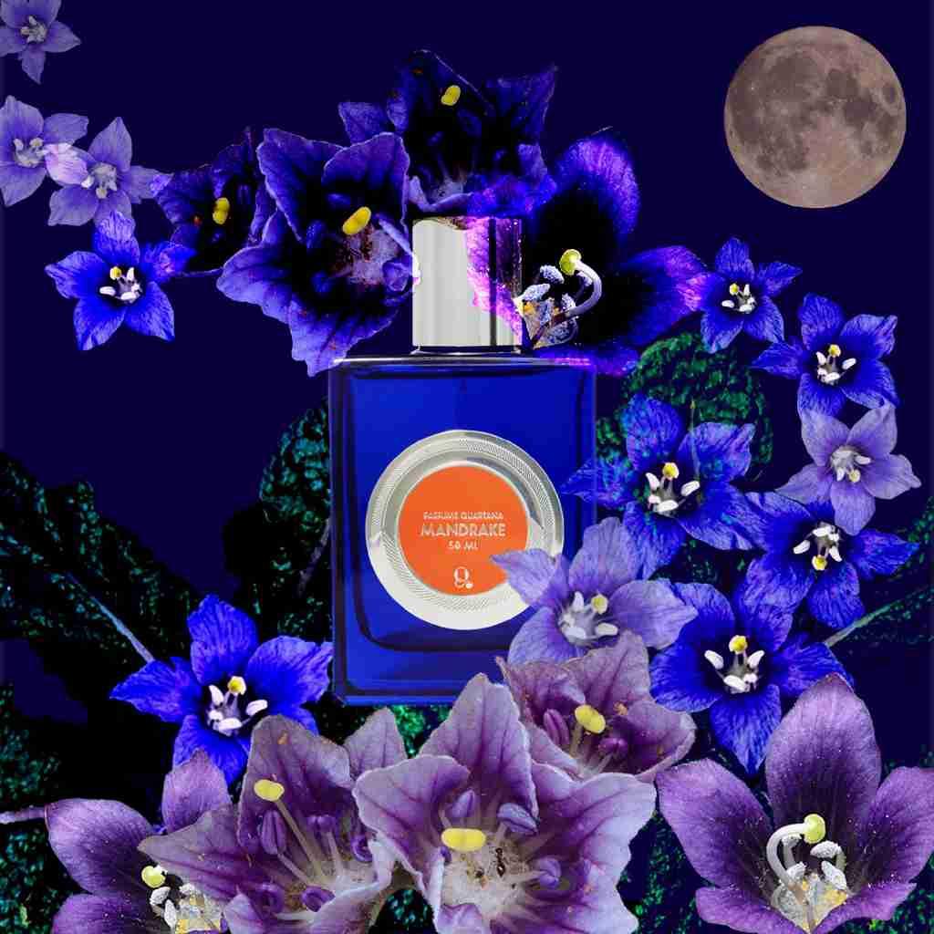 Mandrake Parfum