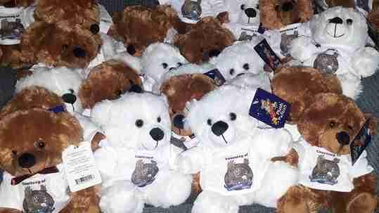 Teddy bears wearing t-shirts.