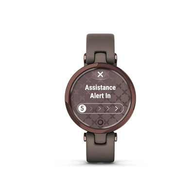 Safety and Tracking Features, Garmin Lily smartwatch