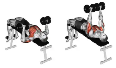 Top 5 Chest Workouts For Explosive Gains – Soalpha