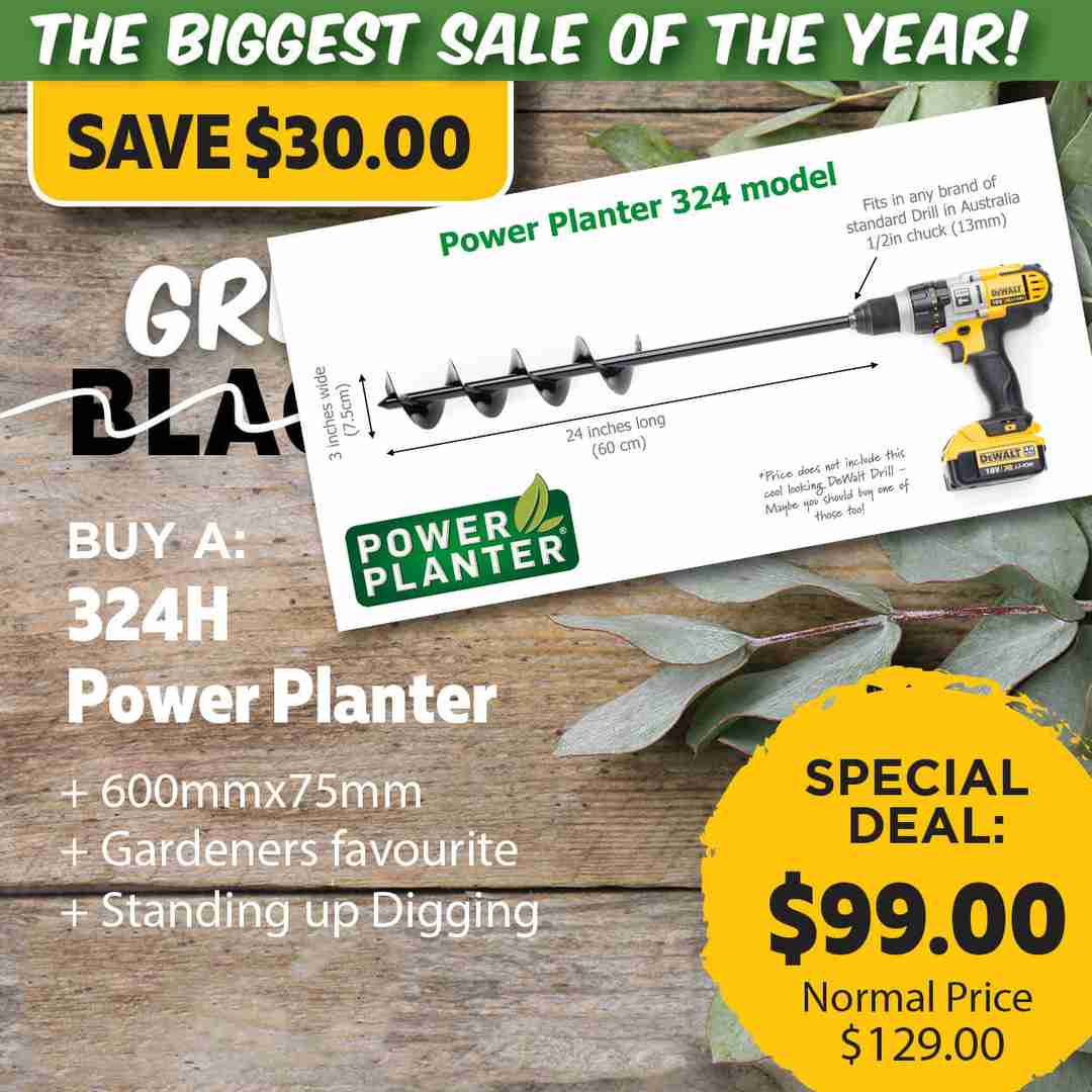 Green Friday Super Deal $129 value for just $99 - The biggest sale of the year.