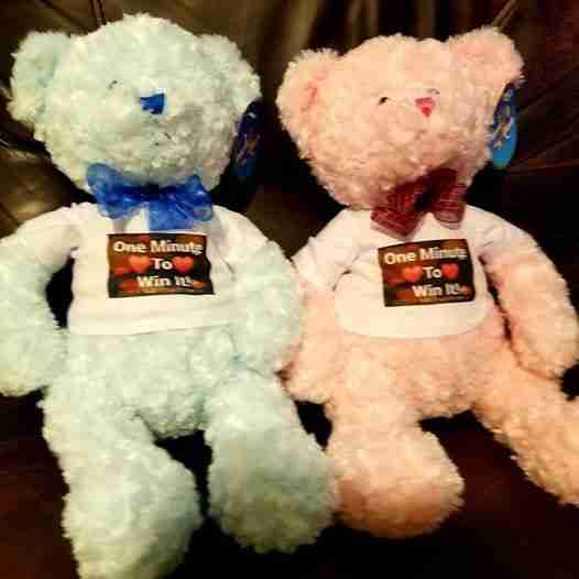 A pink and blue bear with matching shirts
