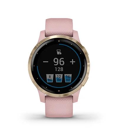 Garmin V4 GPS Smartwatch -