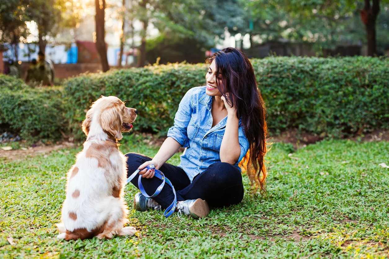 Going to the Dentist and The Importance of Listening to Your Dog -- Connected (Who Knew?)