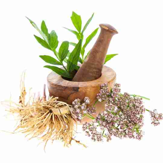 valerian roots, flowers and leaves with wood mortar and pestle