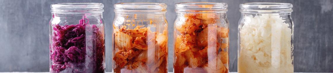 Fermented Foods Pro EM-1 Teraganix Healthy Gut