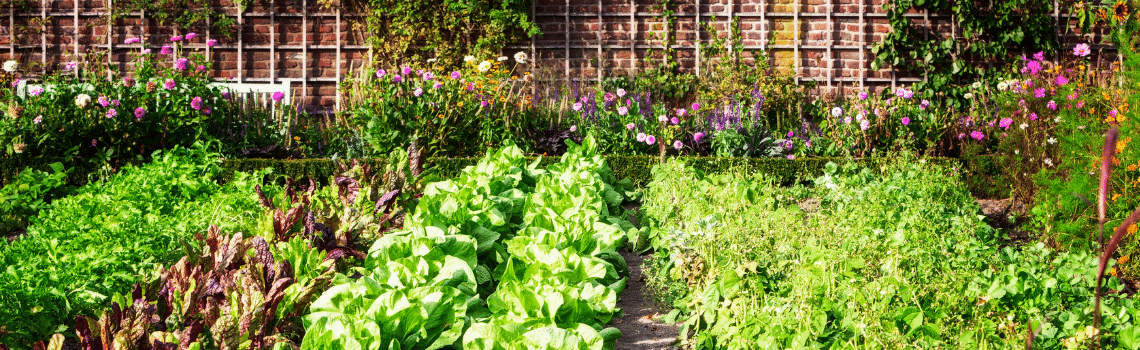 Using soil microbiology to decrease chemical usage in the garden