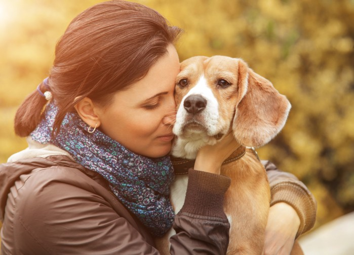 Signs and Causes of Kidney Disease in Your Dog