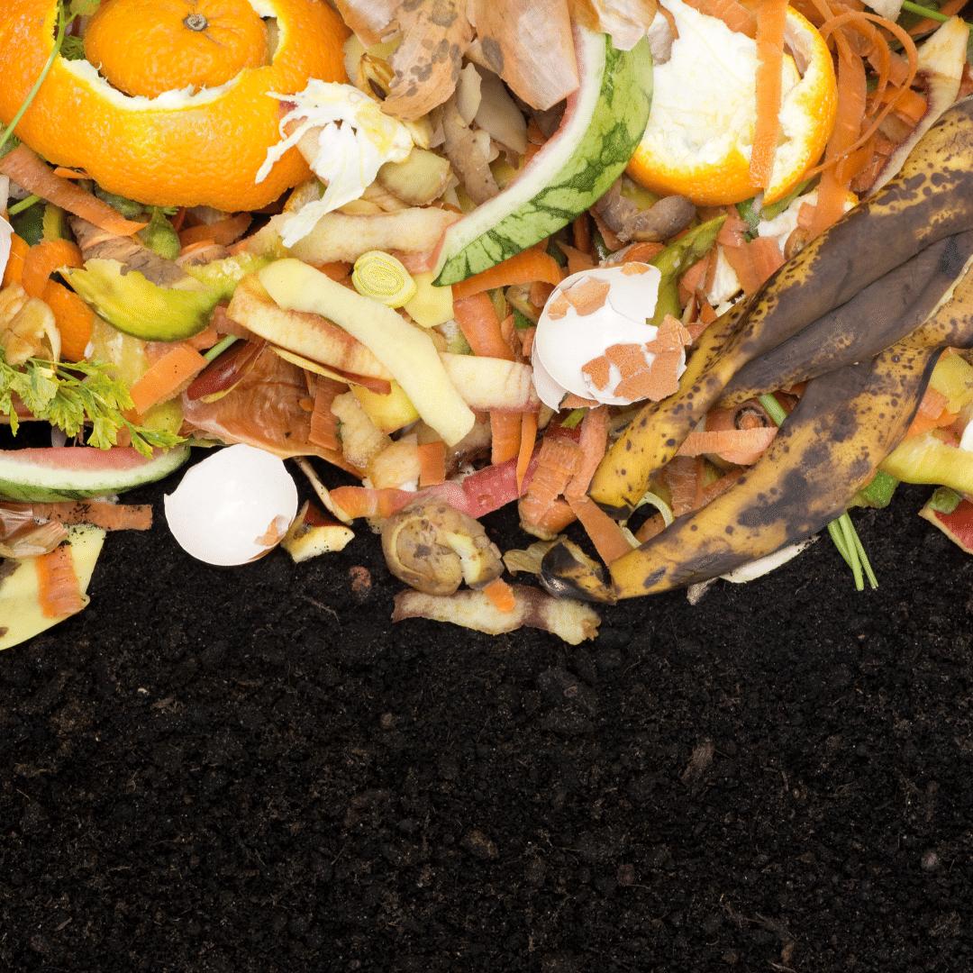 Food Waste Bucket Composting