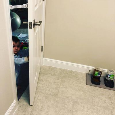 The Door Buddy - Blog - Toddler Proof Litterbox