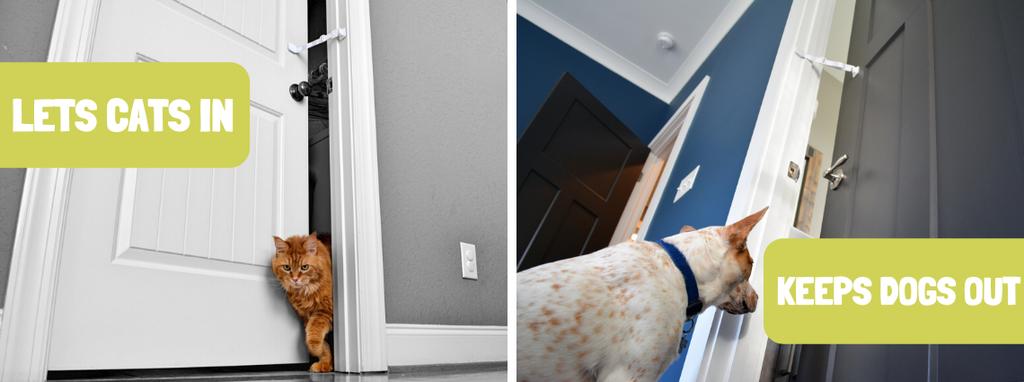 Door Buddy - keep dog out of litter box
