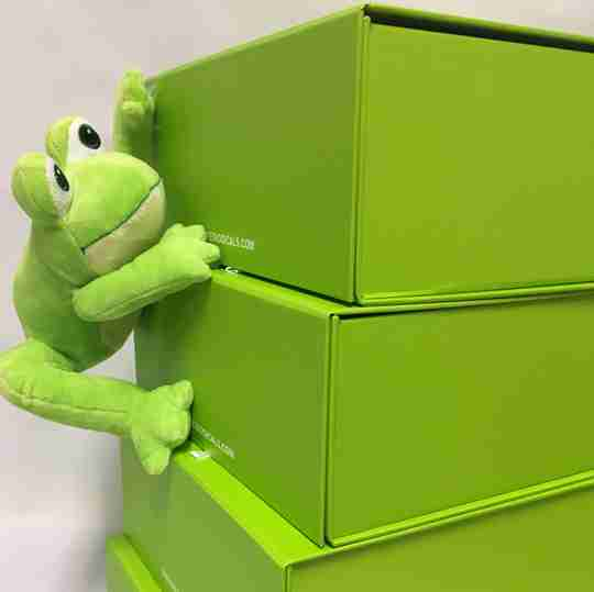 A frog hanging onto the side of some boxes.