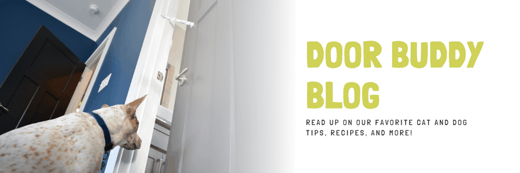 DOOR BUDDY DOG AND BABY PROOFING BLOG