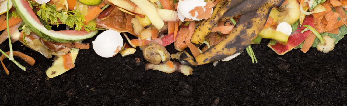 food waste recycling accelerates decomposition of your traditional compost