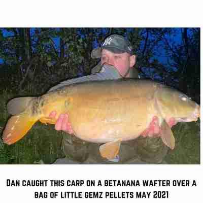 Dan with a Little Gemz Pellet caught Carp