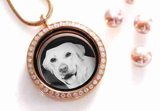 Dream Locket Necklace with Photo Insert