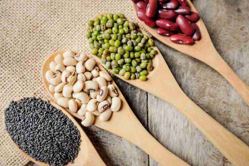 Foods that have phytoestrogens reduce menopause