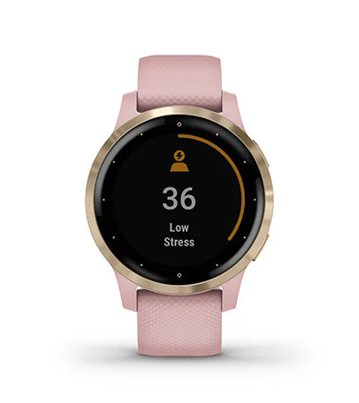 Garmin V4 GPS Smartwatch - All Day Stress Tracking
