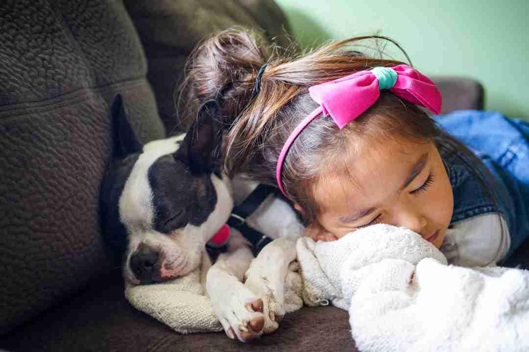 kid sleeping with dog