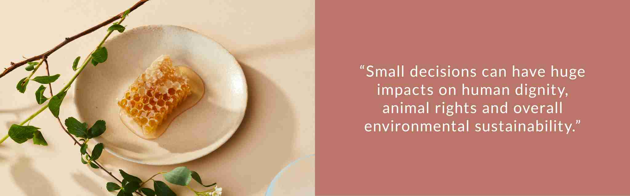 small decisions can have huge impacts on human dignity, animal rights and overall environmental sustainability