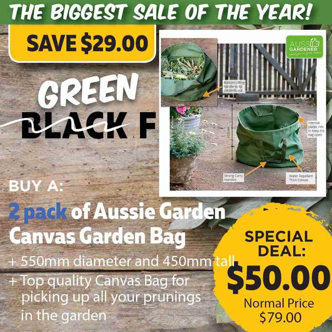 Green Friday Super Deal $79 value for just $50 - The biggest sale of the year.