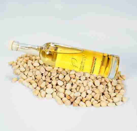 AUSTRALIAN MACADAMIA NUT OIL COLD PRESSED (500ML BOTTLE) on top of macadamia nuts white background