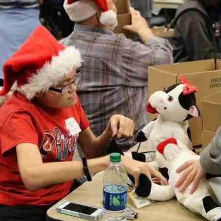 A volunteer hacks an musical plush cow.