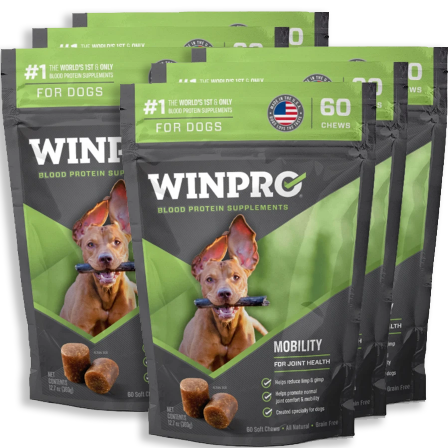 WINPRO MOBILITY