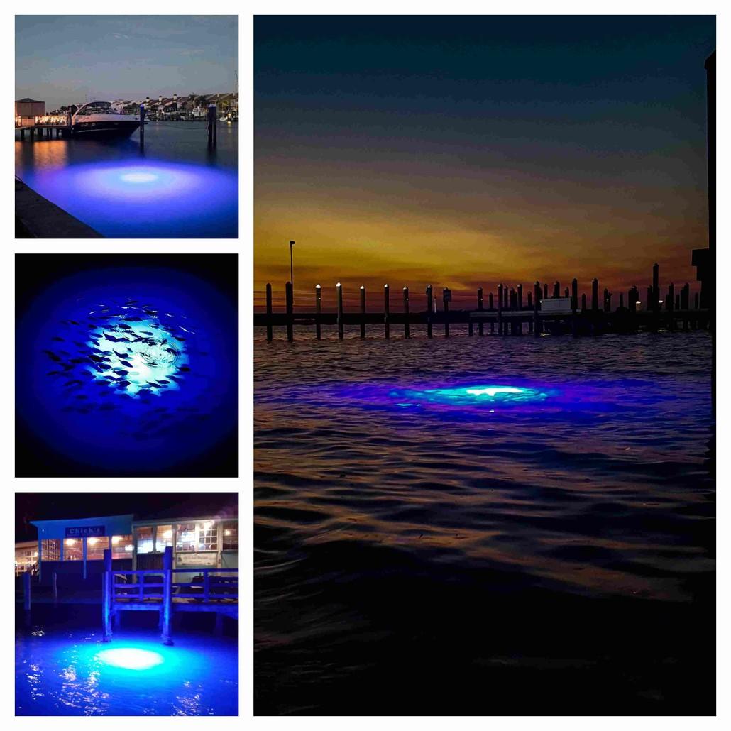 blue-led-dock-lights