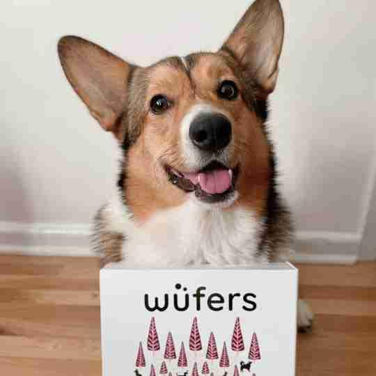 Wüfers Birthday Board August 2020