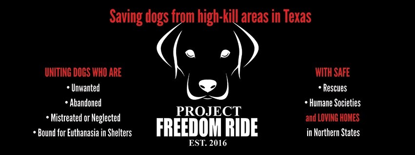 January 2019 Charity Spotlight Project Freedom Ride