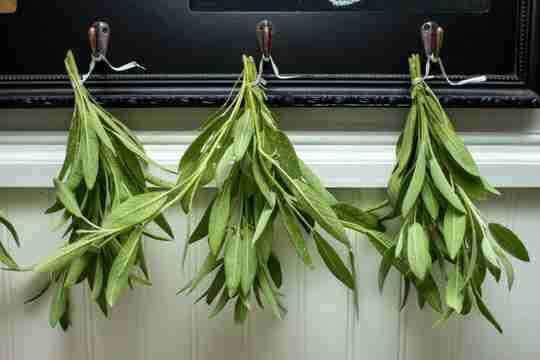 how to dry sage upside down