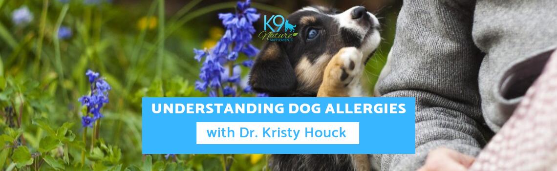 understanding-allergies-dr-kristy-houck