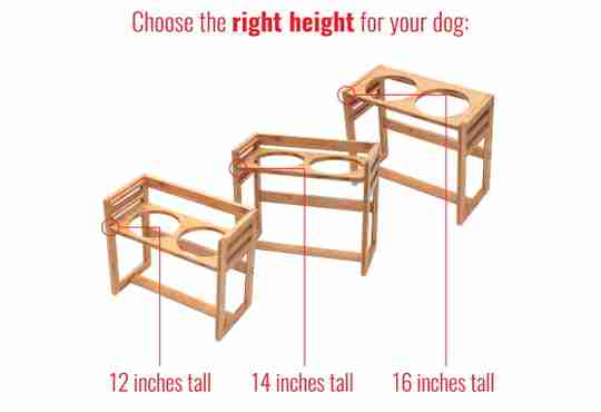 adjustable elevated pet feeder, choose the right height for your dog