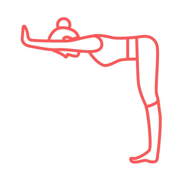 Standing Half Forward Bend (Ardha Uttanasana) at the Wall
