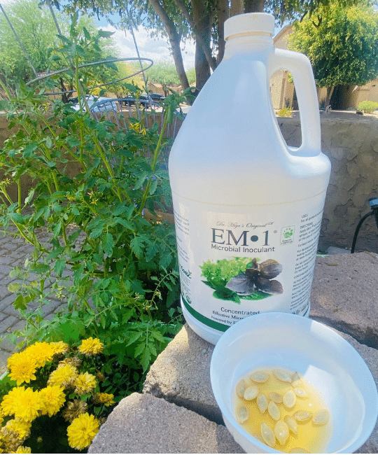 EM-1 Microbial Inoculant seed soak increase germination
