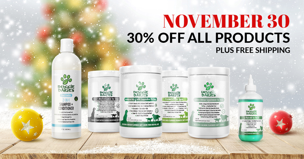 November 30th Only. 30% Off All Products + Free Shipping