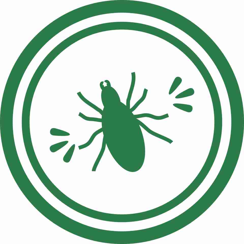 Infections (Especially Tick-Borne Diseases)