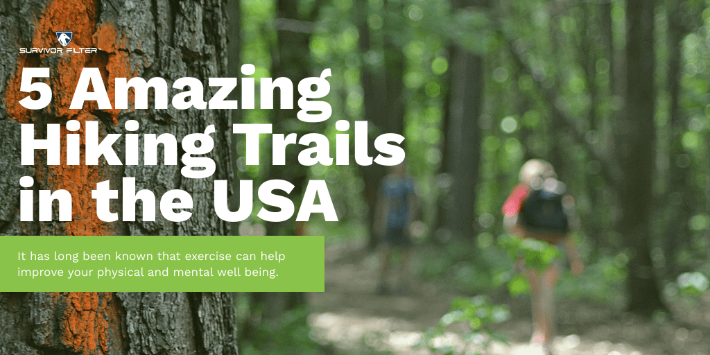5 Amazing Hiking Trails In The USA that you are SURE to love!