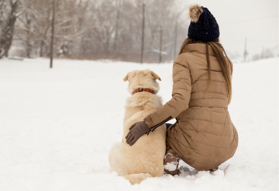 DOG AND OWNER PLAYING IN THE SNOW
