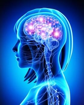 Migraine Brain